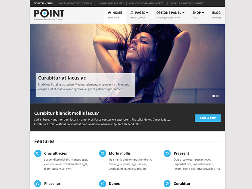 mts_point_pro